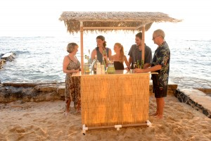 Portable Tiki Bar - Paradise Package