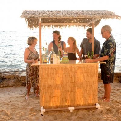 Portable Tiki Bar - Paradise Package